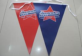 Banner vlajkového plátna vytištěný eco rozpouštědlovou tiskárnou Wer-ES1801 1.8m (6 stop) 2