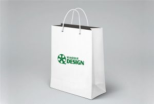 Papír-taška-tisk-vzorek-potištěný-A1-velikost-uv-tiskárna-WER-EP6090UV
