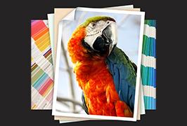 Fotografický papír tištěný eco-solventovou tiskárnou WER-ES1802 o průměru 1,8 m