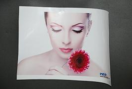 Samolepící vinyl vyrobený tiskárnou ekologickou solventní tiskárnou WER-ES3202 o tloušťce 3,2 m (10 stop)